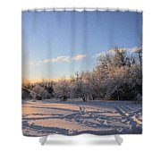 Midwinter Morning Shower Curtain