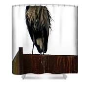 Mighty High Heron  Shower Curtain