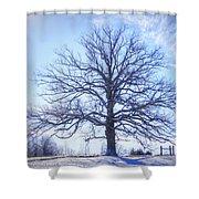 Mighty Oak In Winter Shower Curtain