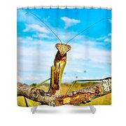 Mighty Super Mantis Shower Curtain