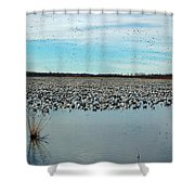 Migrating Geese Shower Curtain