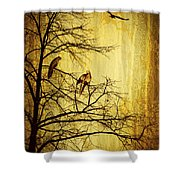 Migratory Shower Curtain