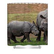 Mili And Sundari  Shower Curtain by Steve LLamb