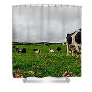 Milk Nature Nose Shower Curtain