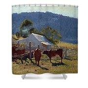 Milking Time. Araluen Valley Shower Curtain