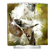 Milkweed Blowout Shower Curtain