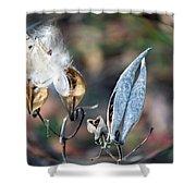 Milkweed Breaking Free Shower Curtain