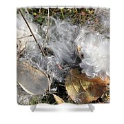 Milkweed Landing Shower Curtain