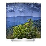Milkweed Plants Along The Blue Ridge Parkway Shower Curtain