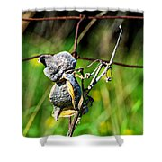 Milkweed Retirement  Shower Curtain