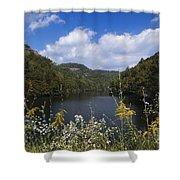Mill Creek Lake - D001303 Shower Curtain