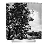 Mill Creek Marsh Afternoon Sun Shower Curtain