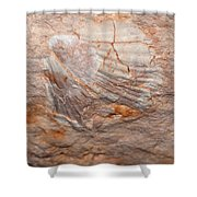million years ago 2 - An enormeous shell fossile in top of cova des coloms in Es Migjorn - Menorca Shower Curtain