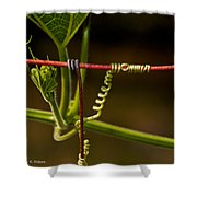 Mimic Shower Curtain