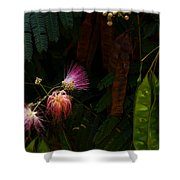 Mimosa And Peppervine Shower Curtain