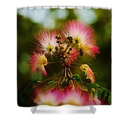 Mimosa Blooms Shower Curtain