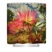 Mimosa Blossoms Shower Curtain