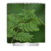 Mimosa Greens Shower Curtain