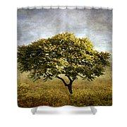 Mimosa Magic Shower Curtain