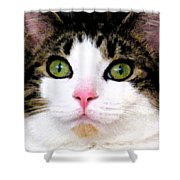 Mina's Green Eyes Shower Curtain