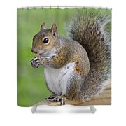 Mine Shower Curtain by Carolyn Marshall