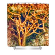 Mineral Branches Hot Springs Shower Curtain