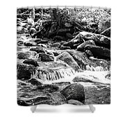 Mini Cascades Smoky Mountains Bw Shower Curtain
