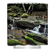 Mini Waterfalls Shower Curtain by Kaye Menner