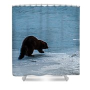 Mink Shower Curtain