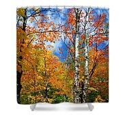 Minnesota Autumn Foliage Shower Curtain