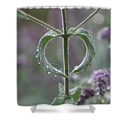 Mint Heart Shower Curtain