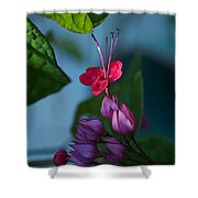 Miracle Vine Shower Curtain