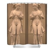 Mirror Image Adorable Beauty Princess Shower Curtain by Navin Joshi