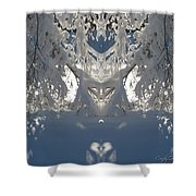 Mirror Of Snow  Shower Curtain