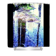 Climbing The Mirror Trees Shower Curtain
