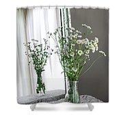 Mirrored Daisies Shower Curtain