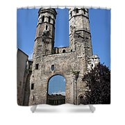 Mirrored Portal - Macon  Shower Curtain