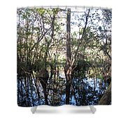 Mirroring The Swamp Shower Curtain