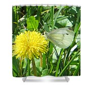 Miss Busy Butterfly Shower Curtain