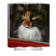 Miss Gizzie Waits By Diana Sainz Shower Curtain