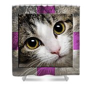 Miss Tilly The Gift 1 Shower Curtain by Andee Design