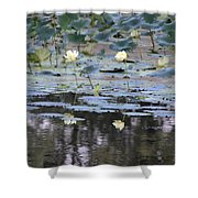 Mississippi Lotus Shower Curtain