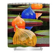 Missouri Botanical Garden Six Glass Spheres And Lilly Pads Img 5490 Shower Curtain