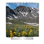 Missouri Mountain And Wildflower Landscape Shower Curtain