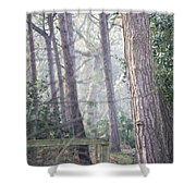 Mist Through The Trees Shower Curtain
