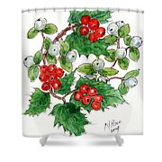 Mistletoe And Holly Wreath Shower Curtain