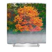 Misty Fall Tree Shower Curtain