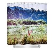 Misty Field In Blue Ridge Mountain Farmlands Shower Curtain