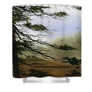 Misty Forest Bay Shower Curtain