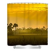 Misty Glade Shower Curtain
